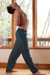Rayon Yoga Pants